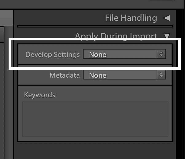 Apply Preset on Import