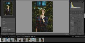 Using Lightroom Brushes