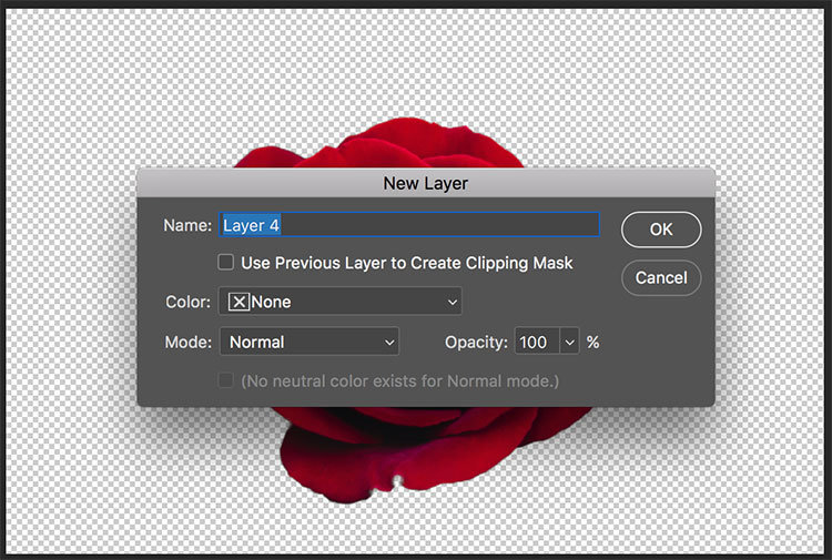 Make a Background White in Photoshop_Step 7