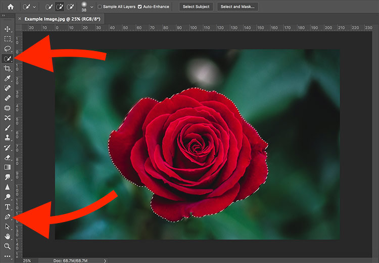 Make a Background White in Photoshop_Step 2
