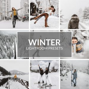 Winter-Lightroom Presets