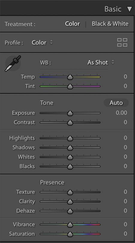 preset adjustment basic panel