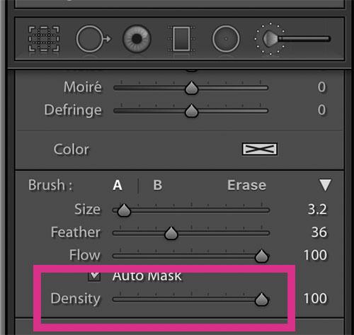 brush density
